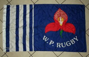 Large South African Western Province Rugby Team Flag