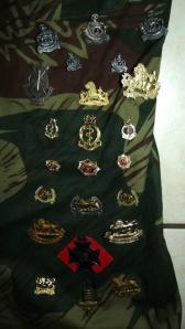 Rhodesia Army Bush War Memento Camo Shirt with 48 Badges