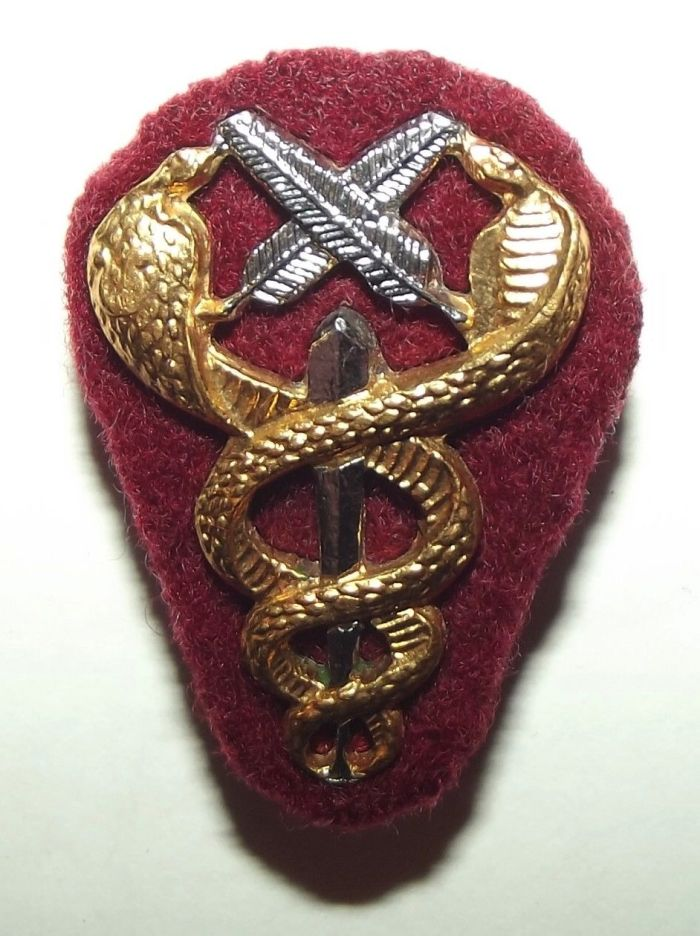 South Africa SADF Medical Services Administrative Personnel Metal Breast Badge